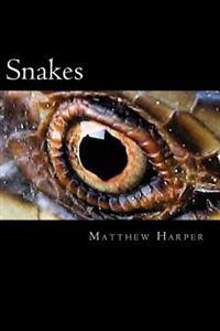 Snakes: A Fascinating Book Containing Snake Facts, Trivia, Images & Memory Recall Quiz: Suitable for Adults & Children