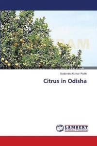 Citrus in Odisha
