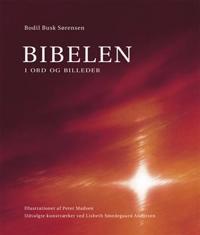 Bibelen i ord og billeder