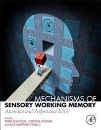 Mechanisms of Sensory Working Memory
