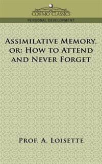 Assimilative Memory, or How to Attend and Never Forget