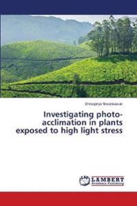 Investigating Photo-Acclimation in Plants Exposed to High Light Stress