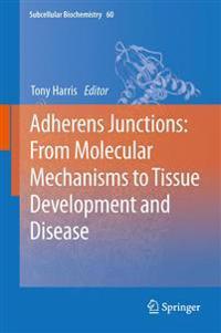 Adherens Junctions