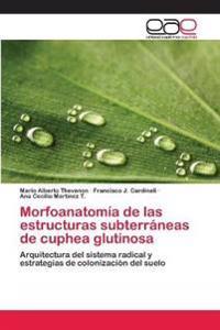 Morfoanatomia de Las Estructuras Subterraneas de Cuphea Glutinosa