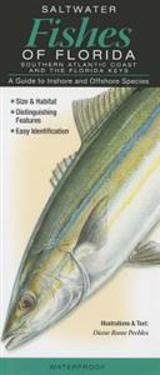 Saltwater Fishes of Florida-Southern Atlantic Coast & the Florida Keys: A Guide to Inshore & Offshore Species