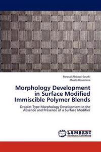 Morphology Development in Surface Modified Immiscible Polymer Blends