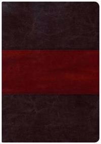Holman Study Bible-NKJV-Large Print