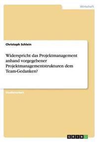 Widerspricht Das Projektmanagement Anhand Vorgegebener Projektmanagementstrukturen Dem Team-Gedanken?