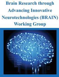 Brain Research Through Advancing Innovative Neurotechnologies (Brain) Working Group