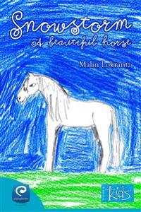 Snowstorm - A beautiful horse
