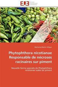 Phytophthora Nicotianae Responsable de Necroses Racinaires Sur Piment