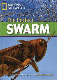 The Perfect Swarm