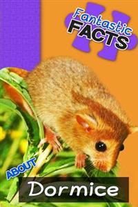 Fantastic Facts about Dormice: Illustrated Fun Learning for Kids