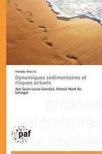 Dynamiques S�dimentaires Et Risques Actuels