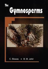 The Gymnosperms