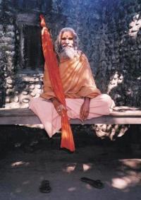 Dandi Swami: The Story of the Guru's Will, Maharishi Mahesh Yogi, the Shankaracharyas of Jyotir Math, & Meetings with Dandi Swami N