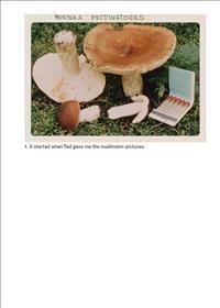 Jason Fulford - the Mushroom Collector