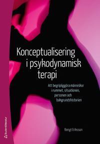 Konceptualisering i psykodynamisk terapi : att begripliggöra människor i rummet, situationen, personen och bakgrundshistorien