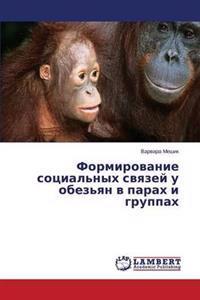 Formirovanie Sotsial'nykh Svyazey U Obez'yan V Parakh I Gruppakh