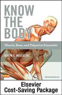 Know the Body: Muscle, Bone, and Palpation Essentials - Text and Workbook Package