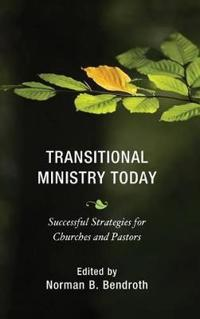 Transitional Ministry Today: Successful Strategies for Churches and Pastors