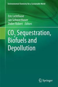 Co2 Sequestration, Biofuels and Depollution