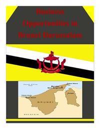 Business Opportunities in Brunei Darussalam