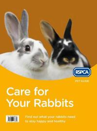 Care for Your Rabbits