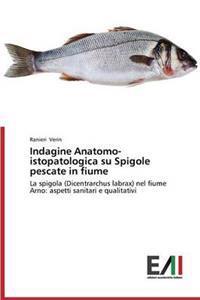 Indagine Anatomo-Istopatologica Su Spigole Pescate in Fiume