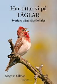 Här tittar vi på fåglar : Sveriges bästa fågellokaler