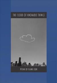 The Cloud of Knowable Things