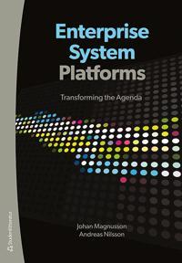 Enterprise system platforms : transforming the agenda