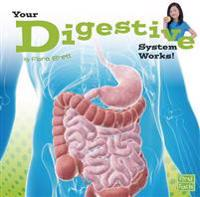 Your Digestive System Works!