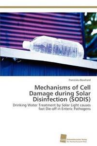 Mechanisms of Cell Damage During Solar Disinfection (Sodis)