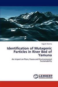 Identification of Mutagenic Particles in River Bed of Yamuna