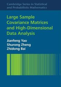 Large Sample Covariance Matrices and High-Dimensional Data Analysis