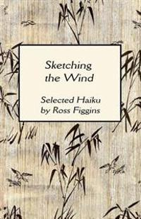 Sketching the Wind