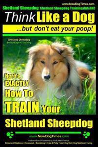 Shetland Sheepdog, Shetland Sheepdog Training AAA Akc: Think Like a Dog, But Don't Eat Your Poop! - Shetland Sheepdog Breed Expert Training -: Here's