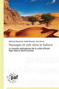 Paysages Et Sols Dans Le Sahara