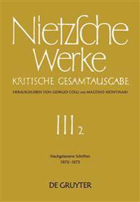 Nachgelassene Schriften 1870 - 1873