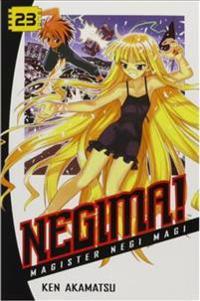 Negima! 23: Magister Negi Magi