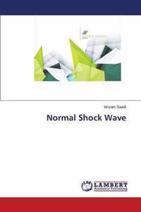 Normal Shock Wave