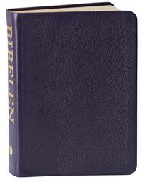 Bibelen med Det Gamle Testamentes apokryfe bøger