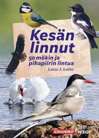 Kesän linnut - 50 mökin ja pihapiirin lintua