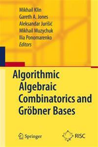 Algorithmic Algebraic Combinatorics and Groebner Bases
