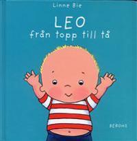 Leo från topp till tå