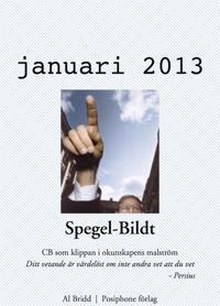 Spegel-Bildt, januari 2013. CB som klippan i okunskapens malström.