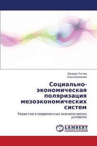 Sotsial'no-Ekonomicheskaya Polyarizatsiya Mezoekonomicheskikh Sistem