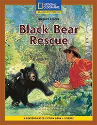 Black Bear Rescue