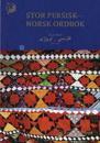 Stor persisk-norsk ordbok